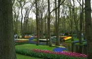 Влюбленный Амстердам